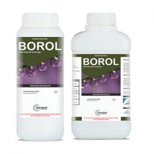 Borol