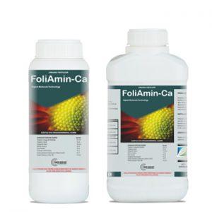 FoliAmin-Ca