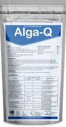 alga-q